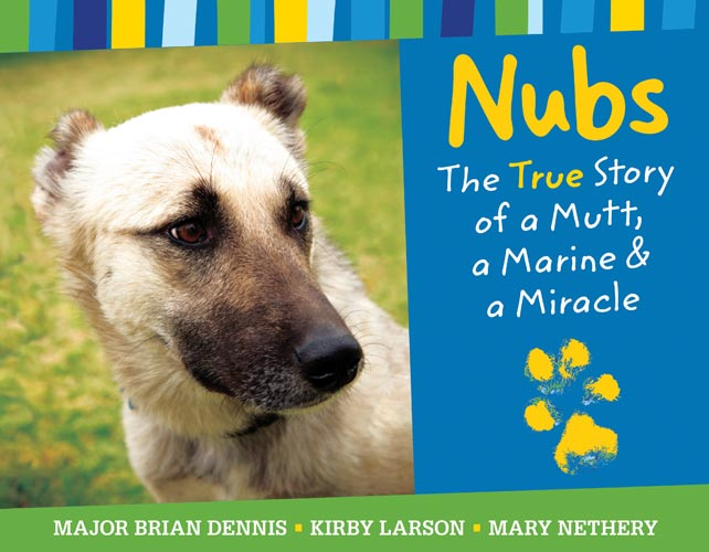 Nubs-cover